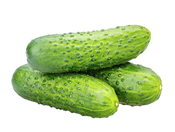 600_Cucumber_Gherkin-18-2041